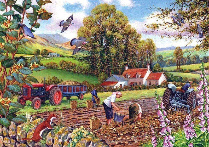 Картинки сельхозработы в поле для детей