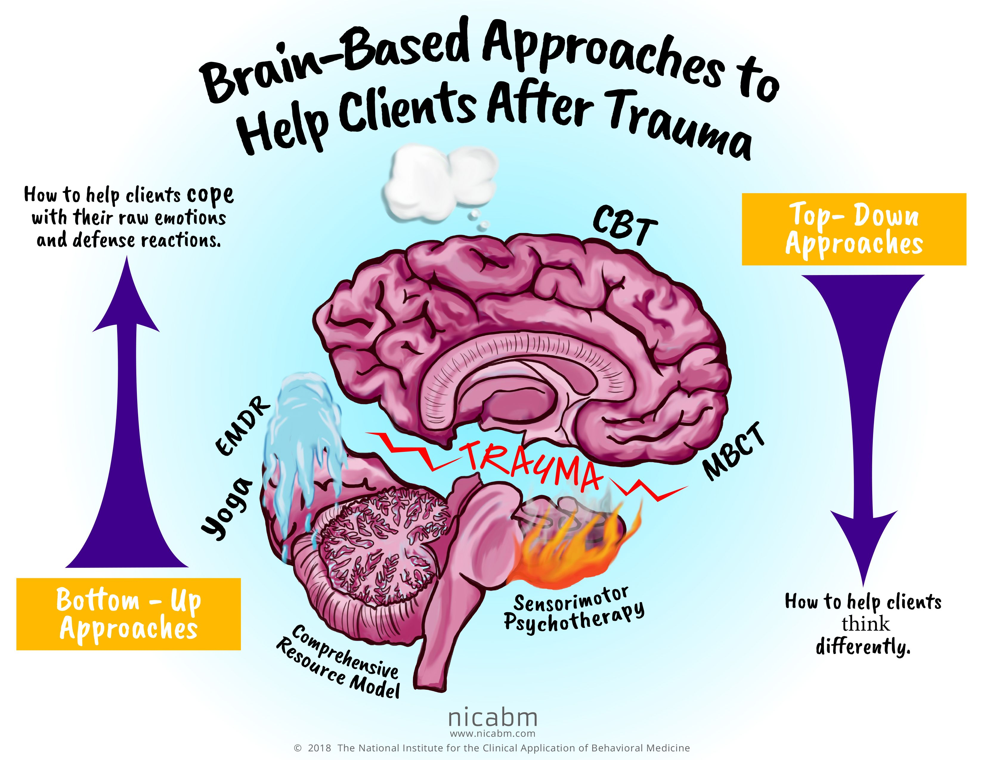 Brain Based Approaches To Help Clients After Trauma