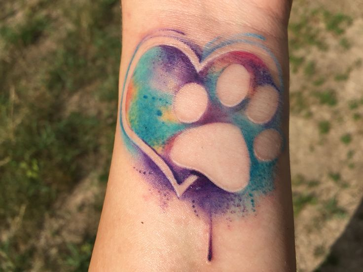Watercolor Tattoo Watercolor Heart And Paw Print Tattoo By