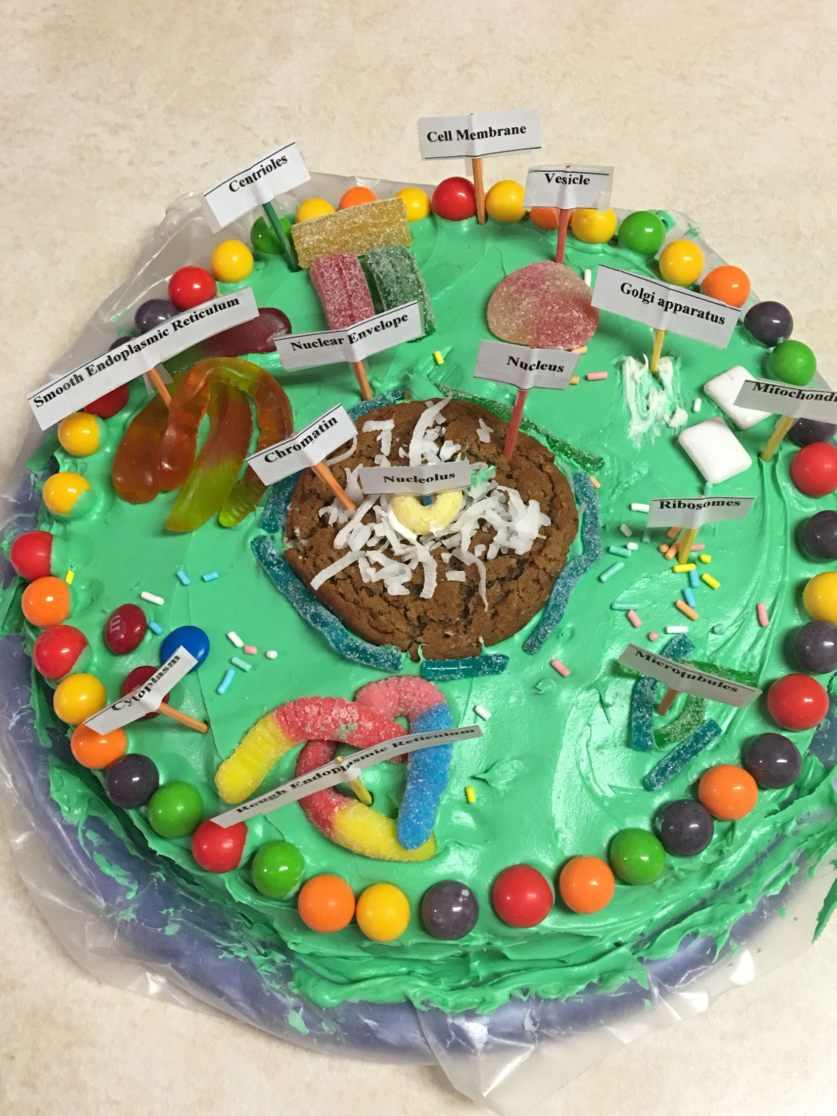 How to make an edible plant cell cake
