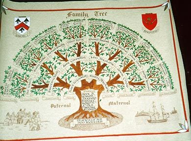 17 Best images about Family Tree Designs on Pinterest ...