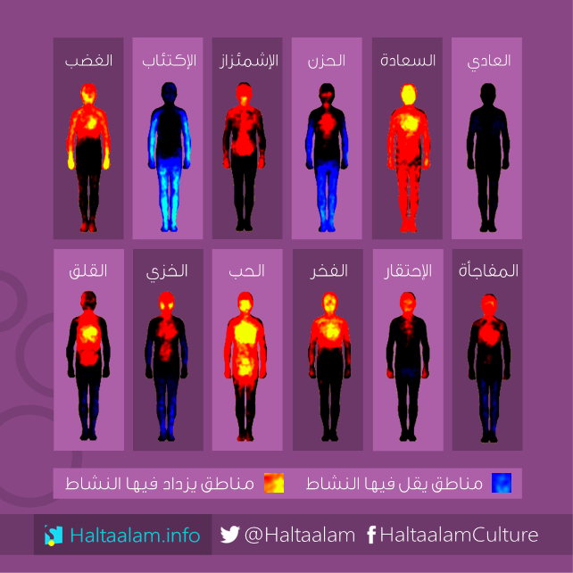 شكل توضيحي صور حرارية توضح أثر تغي ر المشاعر على نشاط جسم الإنسان Poster Movie Posters Pandora Screenshot