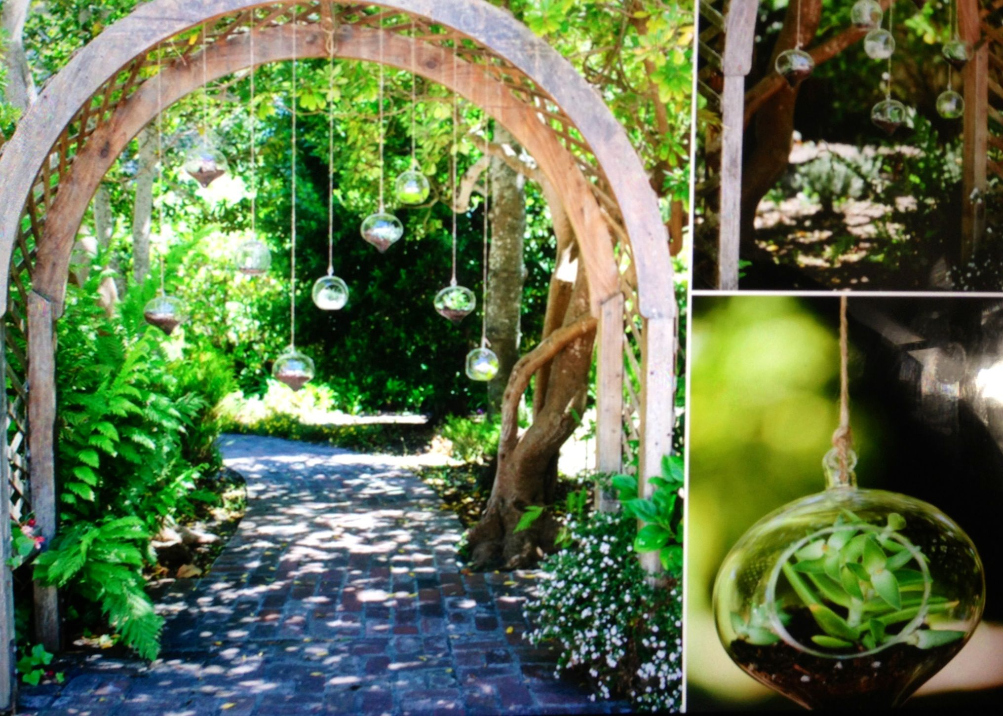 Wedding decorations hanging from trees  Succulent wedding arbor hanging in crystal clear ball planters This