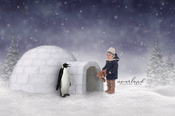 The Igloo and the Penguin / Winter Background for Photographers /  Christmas Backdrop for Photography / Digital Downloads & Overlays / #backdropsforphotographs