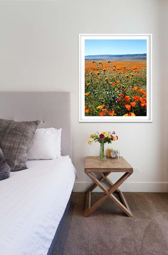 Poppy Fields print by Linda Woods