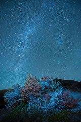 Milky Way (palnick) Tags: park patagonia argentina night way stars los torre shot taken national million around laguna milky milkyway glaciares