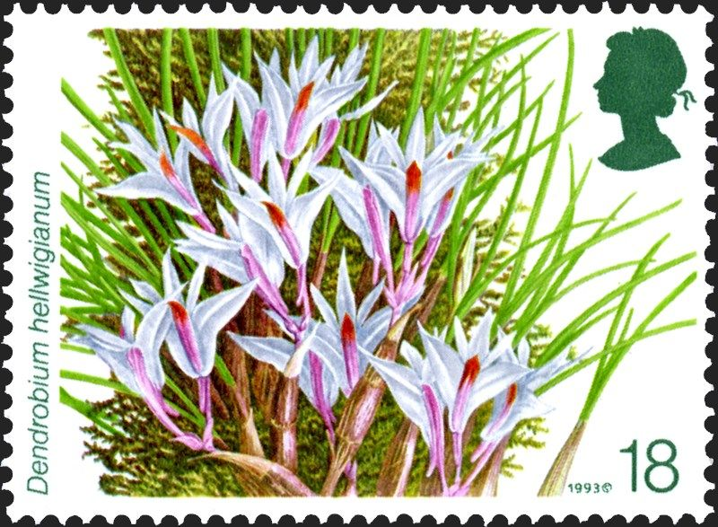 Royal Mail S Special Stamps Gallery And Archive Flower