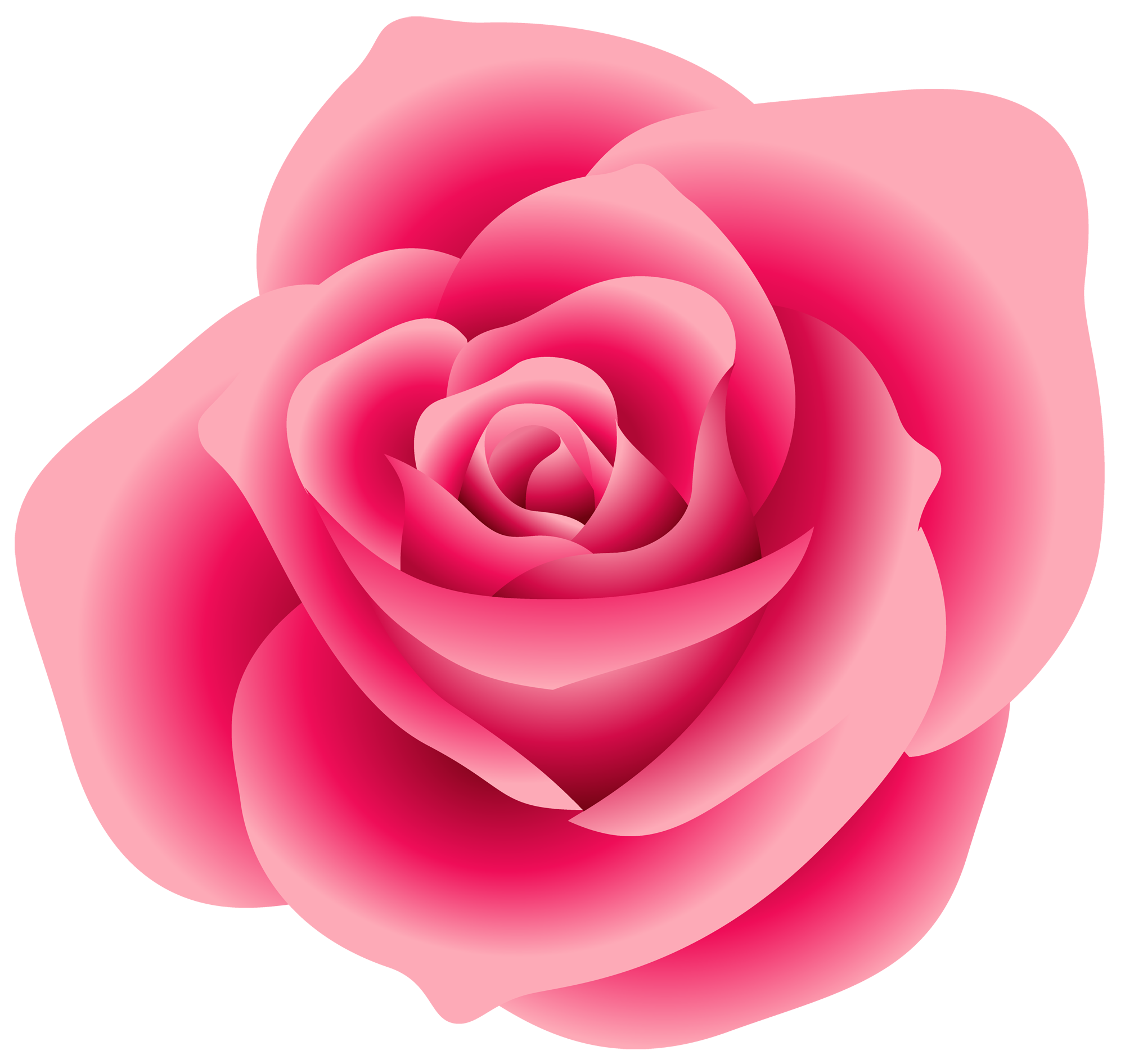 Large Pink Rose Clipart Rose Clipart Pink Rose Png Rose
