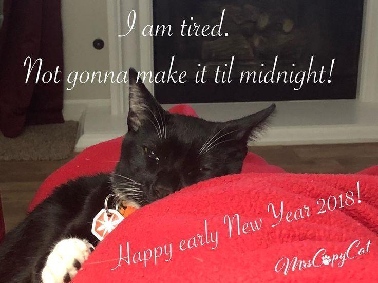 #tiredcat  #tired  #newyearseve  #sleepycat  #petsofinstagram  #instacat  #instakitten  #tuxedokitten  #kittengram  #2018  #tootired  #catlovers  #mrscopycat  #etsyhandmade  #etsypets #gonna #make I am tired! Not gonna make it til midnight! Happy early next year 2018!