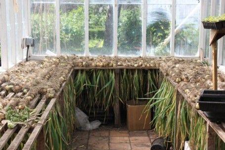 Gorgeous kitchen garden at Deans Court in Dorset, UK. What a neat ...