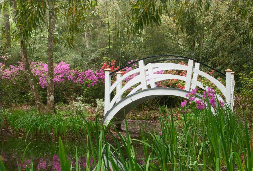 24eed3293db0d54a9a261b61f7b4f0e0 - Magnolia Plantation And Gardens Savannah Ga