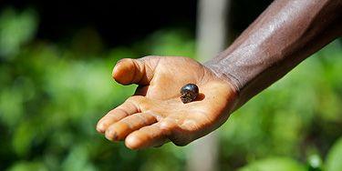 http://shadowness.com/Yshy/doel-neutrale-deal-duwt-de-envelop-bp-holdings-mad    BP Target neutraal heeft ondertekend een grote deal met FedEx ter compensatie van de CO2-voetafdruk van 200 miljoen enveloppen elk jaar verzonden. Dientengevolge, zullen CO2-ontwikkelingsprojecten wereldwijd profiteren van verdere investeringen  Wat hebben miljoenen FedEx enveloppen en een project van de bosbouw in Afrika met elkaar gemeen? De meer voor de hand liggende antwoord misschien wel op papier.