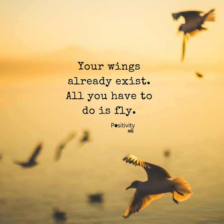 Fly Quotes Your wings already exist. All you have to do is fly  Fly Quotes