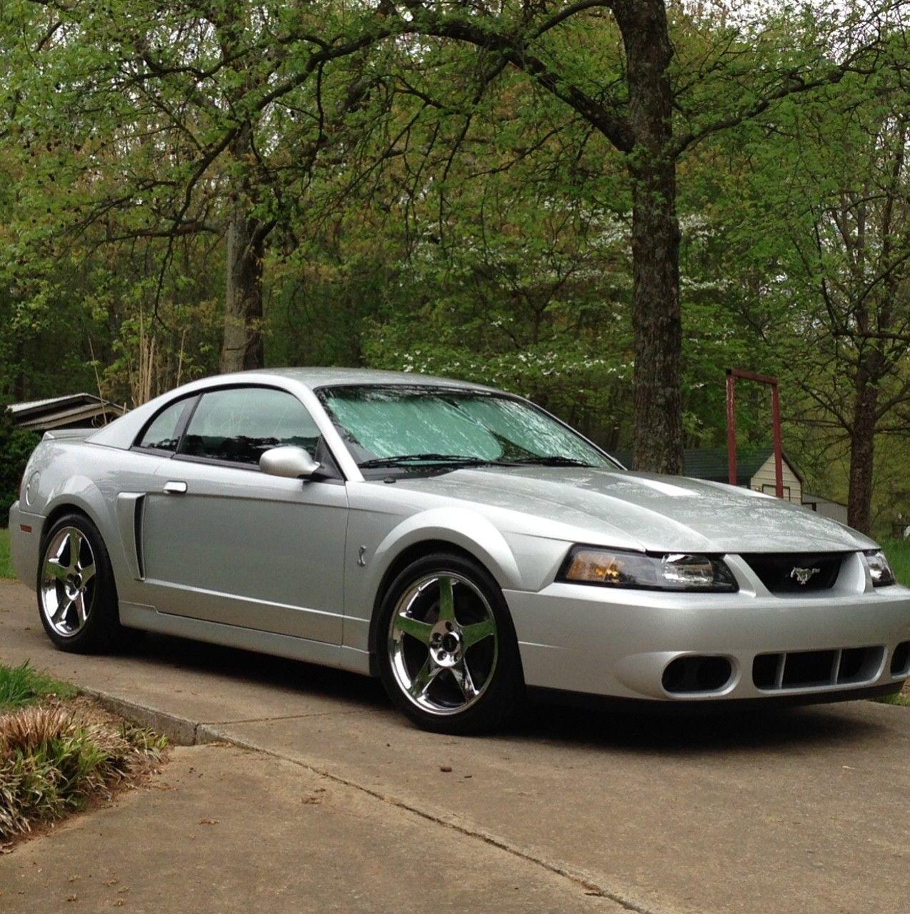 2004 Ford Mustang Cobra 2004 Ford Mustang Mustang Cobra Ford Mustang Cobra