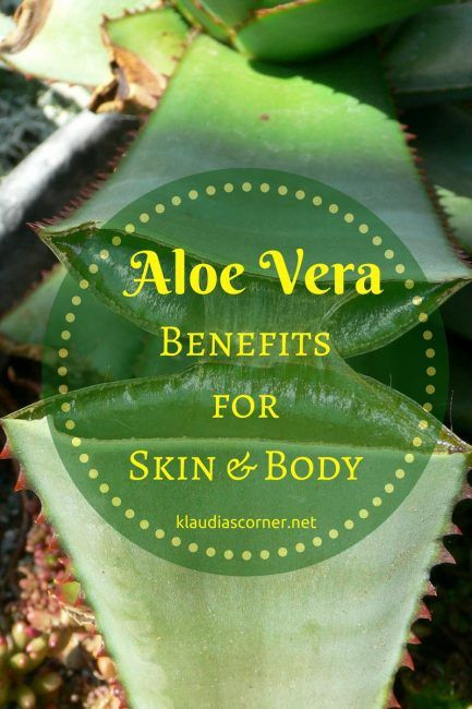 The Benefits Of Aloe Vera Aloe Vera is a plant which is worldwide known for its enormous range of amazing healing properties.The Egyptians already called it the plant of immortality.Aloe Vera plants are so powerful that researchers and scientists are looking into its potential as an AIDS or cancer-fighter.