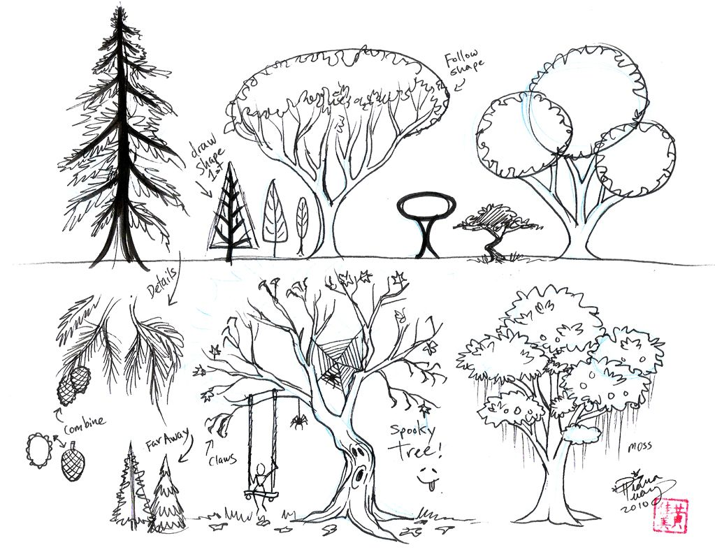 Explore Drawing Trees, Tree Drawings, And More!