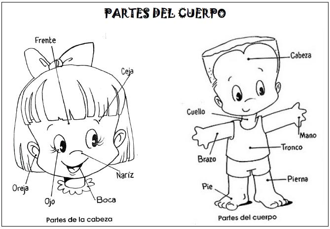 Blog De Recursos Para Ei Conocemos Las Partes De La Cara Y Las Partes Del Cuer Partes Del Cuerpo Preescolar El Cuerpo Humano Infantil Cuerpo Humano Para Ninos