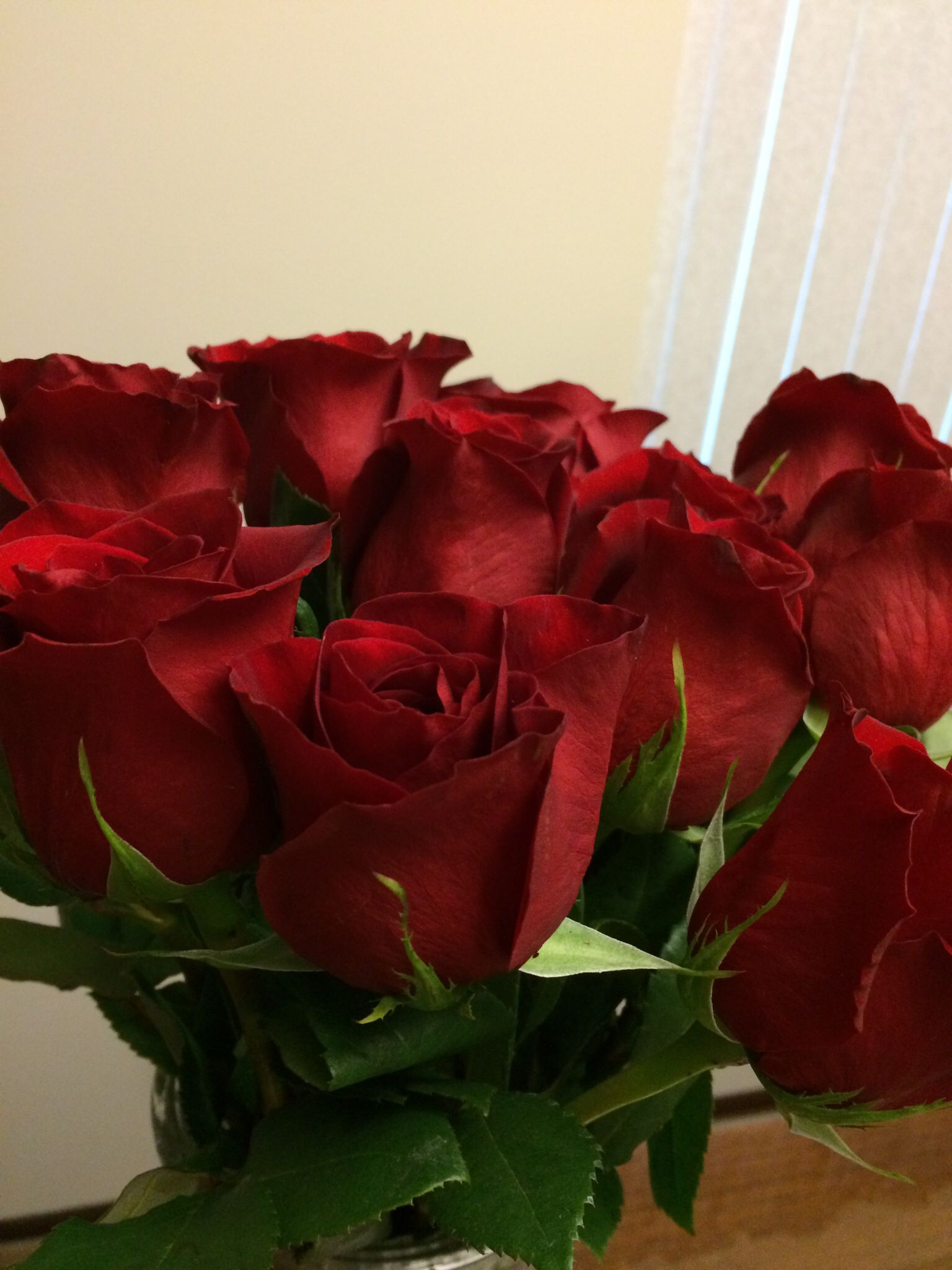 Flowers From My Hubby Of 15 Yrs He S The Best Red Roses Flowers Color Studies