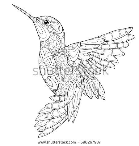 Adult coloring book humming-bird,zen art style vector illustration ...