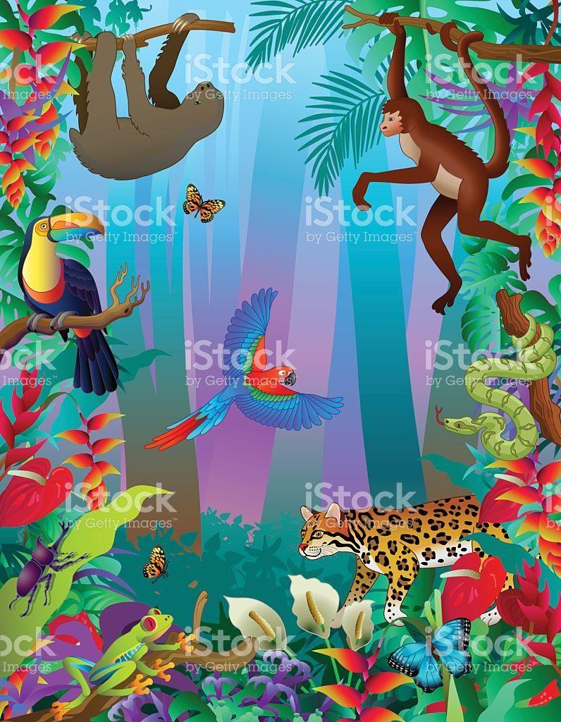 A Vector Illustration Of An Amazon Rainforest Animals Vertical