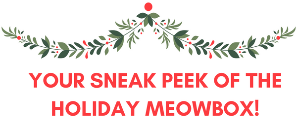December 2016 Meowbox Spoiler!     Meowbox December 2016 Spoiler + Coupon! →  https://hellosubscription.com/2016/12/meowbox-december-2016-spoiler-coupon/ #MeowBox  #subscriptionbox