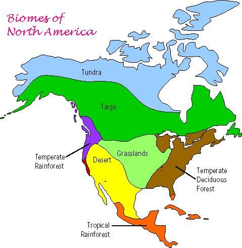 Biomes Of The United States Biomes United States Biomes - Biomes of the us map