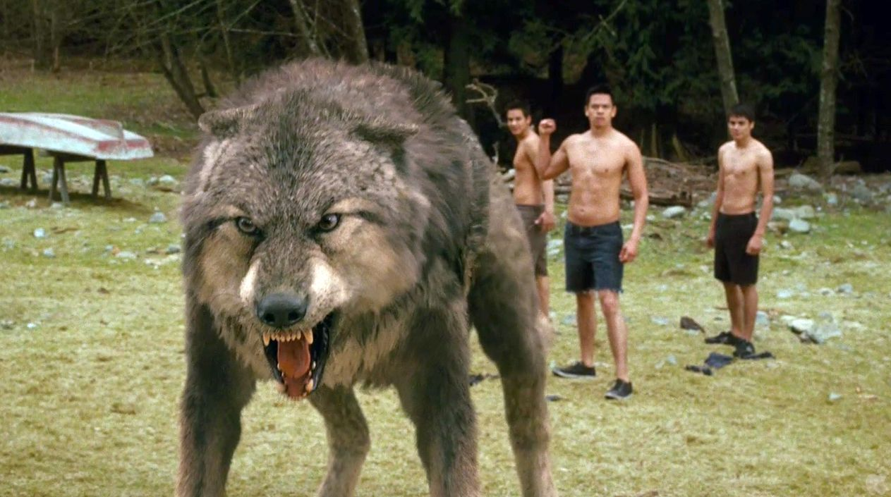 Image is from the film 'Twilight Saga: New Moon' (2009). A werewolf in wolf growls menacingly. Behind them are three young men, who are all shirtless and wearing shorts.