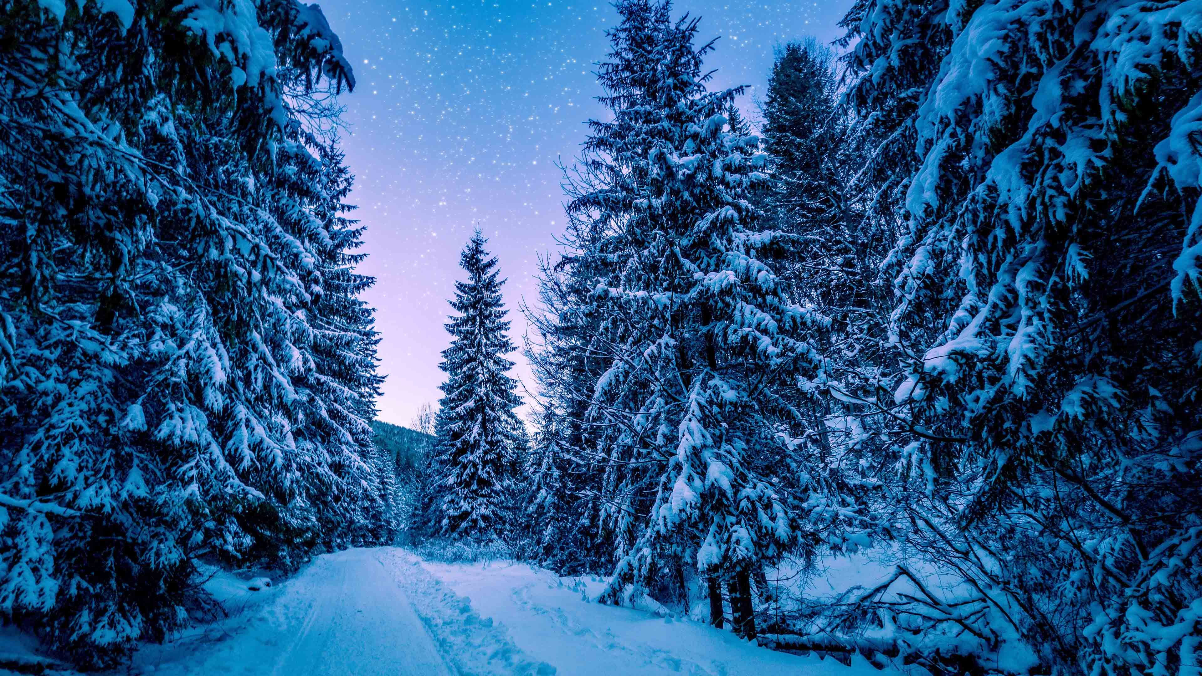 Snow Live Wallpaper Free Live Wallpapers Masterpieces Painting Paint By Number