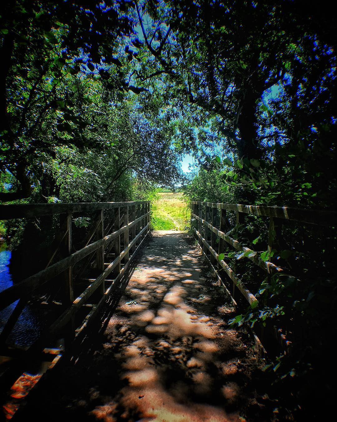 The Bridge Bridge Shadows Sun Light Dappledlight Trees Landscape Perspective Leadinglines Nature Olloclip Dappled Light Landscape Instagram Posts