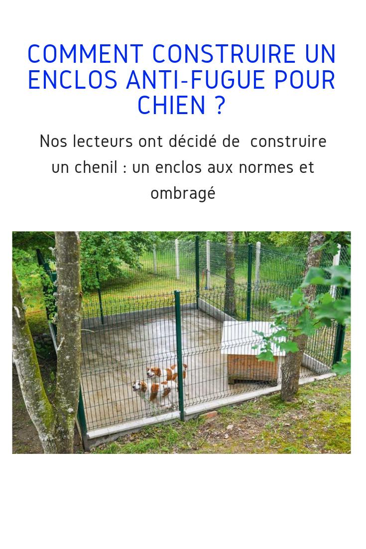 Fabriquer Un Chenil Spacieux Et Confortable Pour Chien Chien Chenil Comment Construire