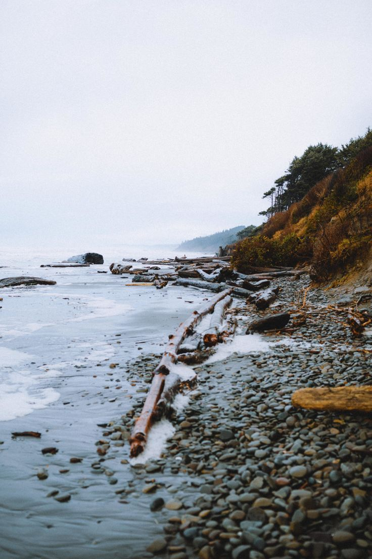 The Perfect 24 Hour Itinerary To The Kalaloch Lodge and Tree Root Cave In Washington - The Mandagies