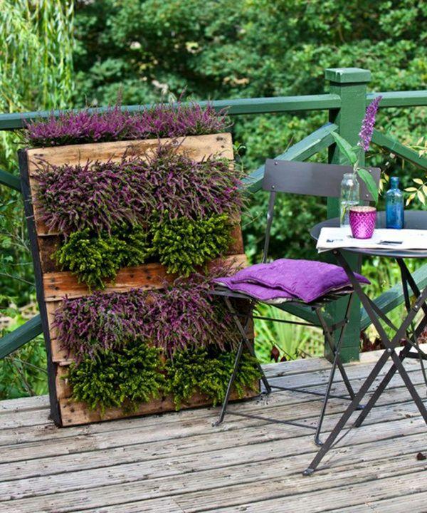 Wandbegrnung sommerliche atmosphre auf der veranda wandbegrnung gardens solutioingenieria Image collections