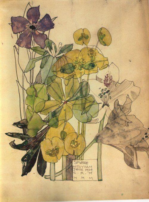 Spurge, 1909, Charles Rennie Mackintosh