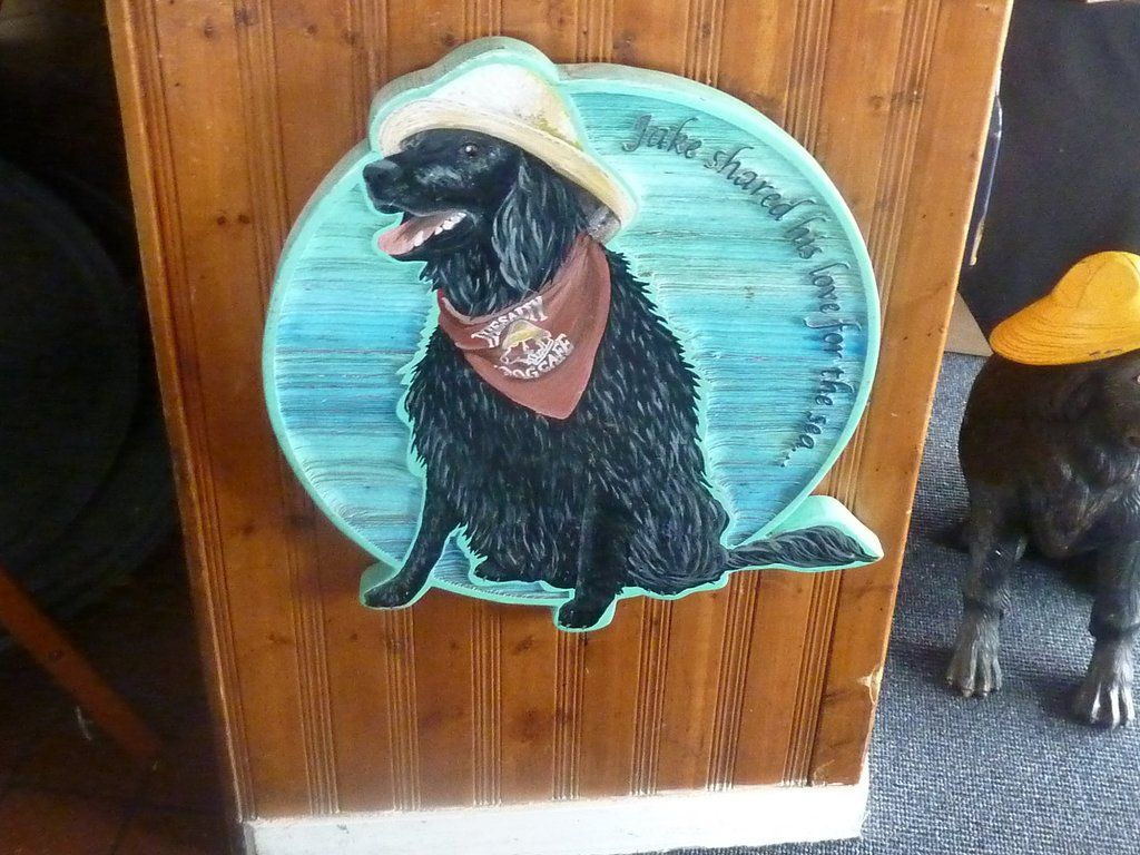 Salty Dog Cafe Hilton Head Restaurant Reviews Phone Number Photos Tripadvisor Salty Dog Cafe Dog Cafe Trip Advisor