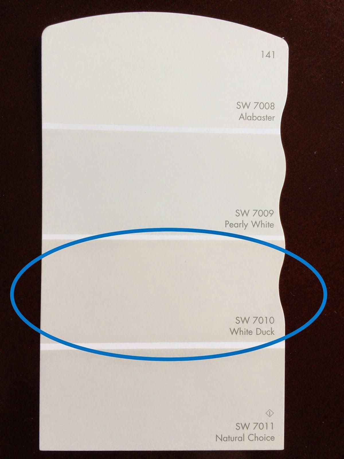 Sherwin Williams White Duck for kitchen cabinets | Kitchen/Sunroom ...