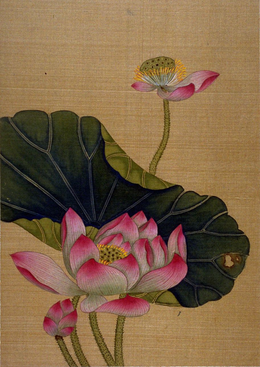 Lotus Blossoms 1700 99 Chiang Su Opaque Fine Craft And Art