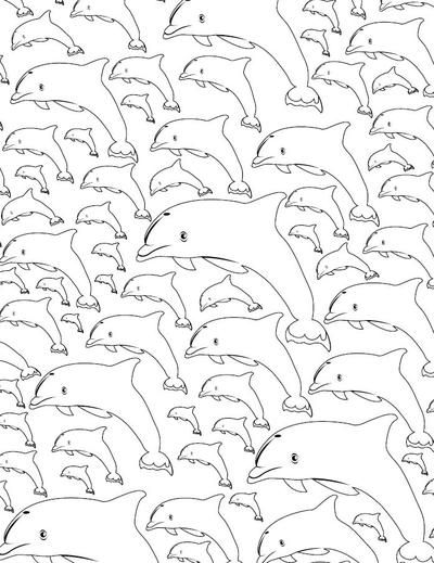 Calming Dolphin Adult Coloring Page Adult coloring Colour book