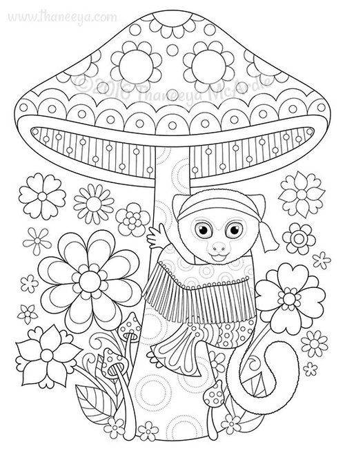 Pygmy Marmoset Coloring Page From Thaneeya McArdles Hippie Animals Book