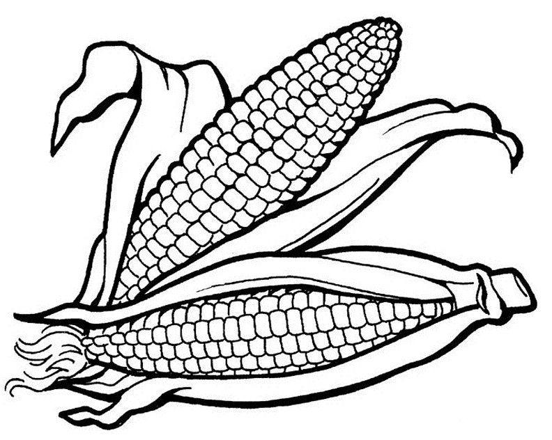 corn cobs Speech Therapy Pinterest