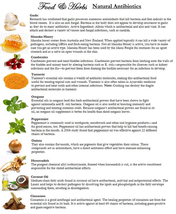 Natural antibiotics -- garlic, manuka honey, cranberries, turmeric
