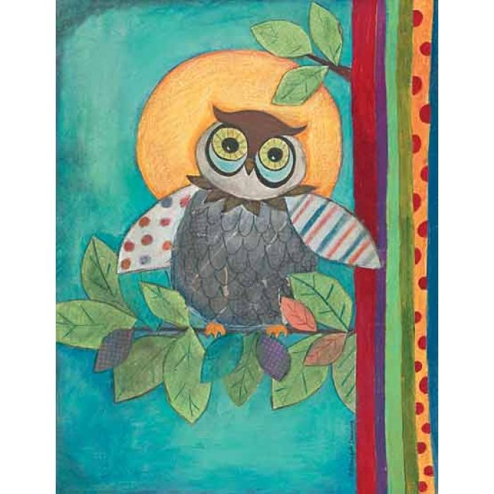 Wide Awake Owl