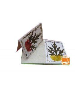 Lokta Paper Greeting cards