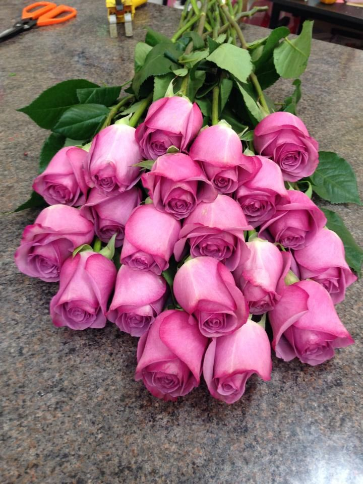 Pink Roses Roses Flowers Flower Shop Florist Shop Unforgettable Flowers Cork Florist Cork Flower Delivery Flowers Online Flowers