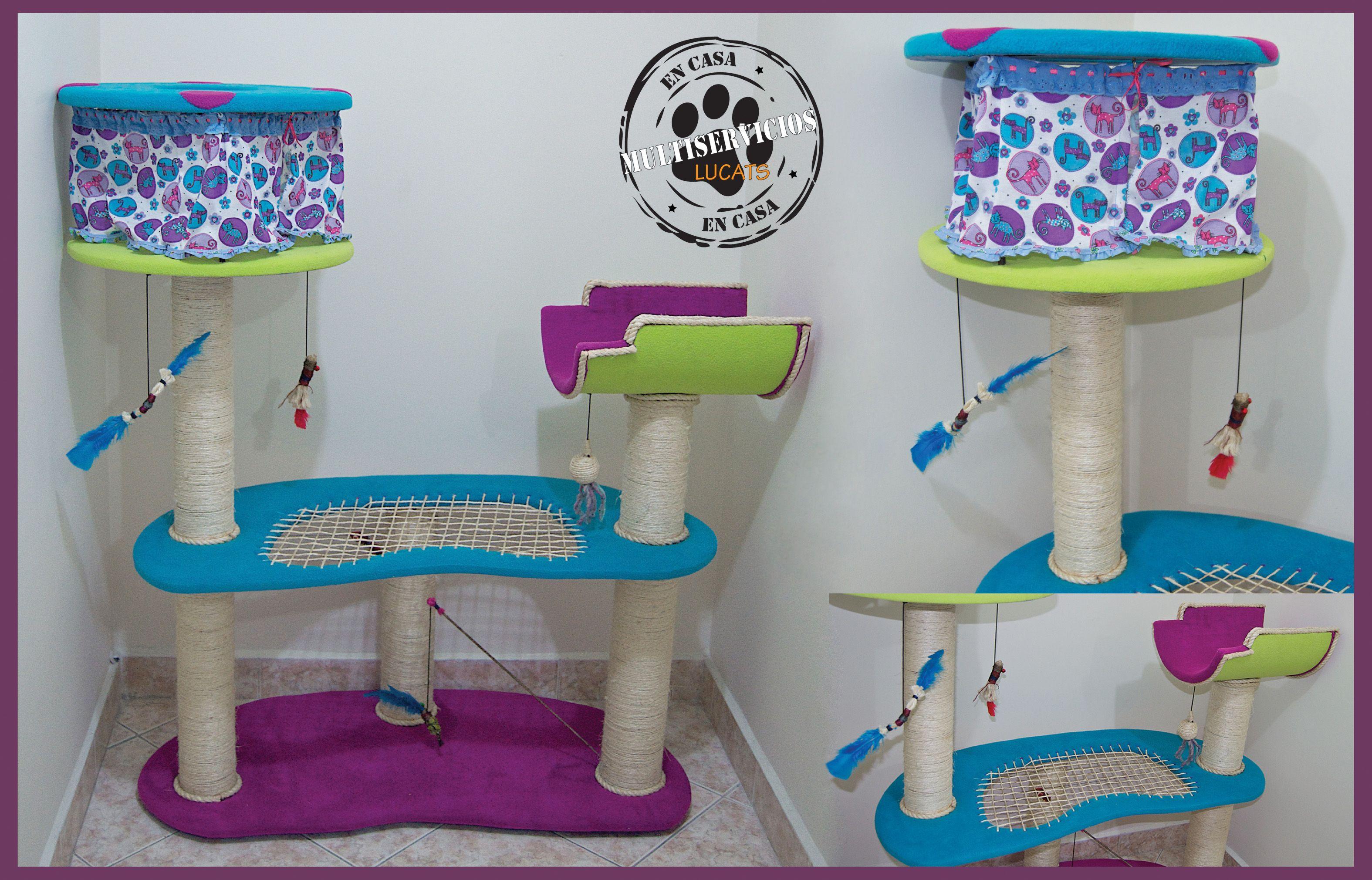 Gimnasio para gatos Lucas Arango Mascotas