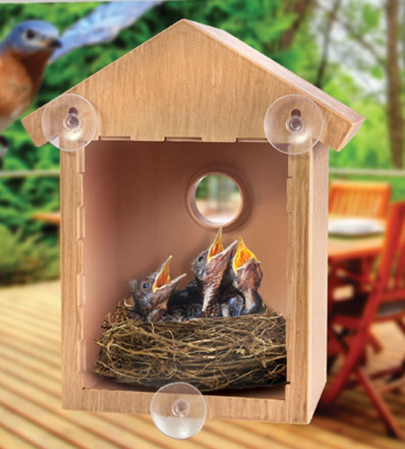 Window Bird House With Two Way Mirror Window Bird Feeder Clear