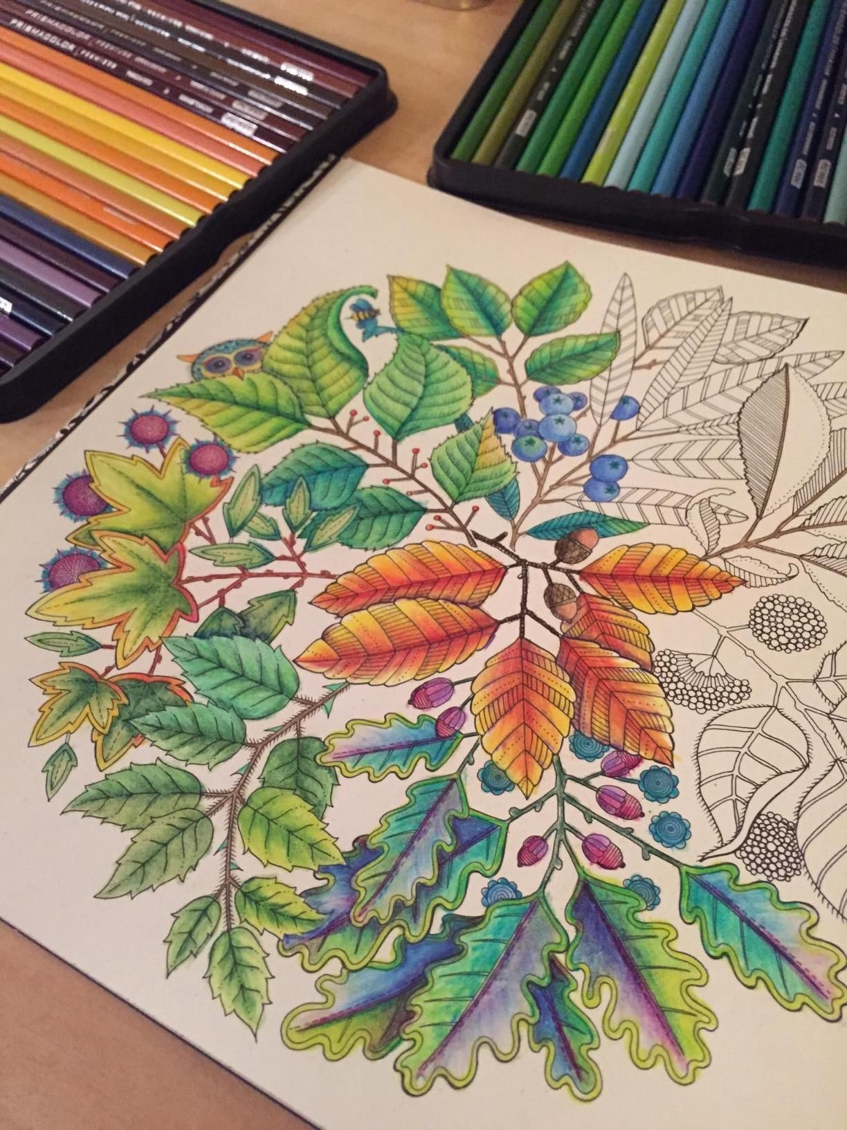 Secret Garden An Inky Treasure Hunt And Coloring Book Johanna Basford By J3nn1b34n On Sep 18 2015