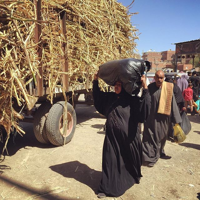 A random street scene in the small town of Kom Ombo, Egypt. A truck carries used sugar cane