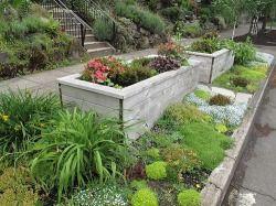 Parking Strip Garden With Raised Beds Sidewalk Landscaping Raised Garden Urban Garden