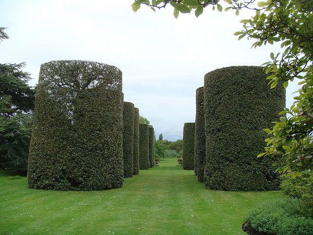 Ilex avenue at Arley Hall Jardines, Jardín y House