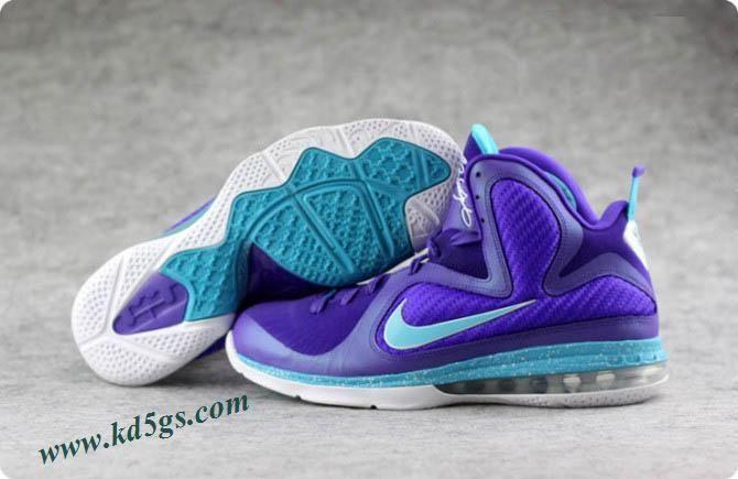 Nike LeBron 9 Summit Lake Hornets in 60649